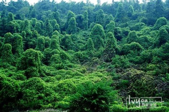 坐落于安徽马鞍山市濮塘风景区,距南京碌口机场仅27公里,距南京市区45