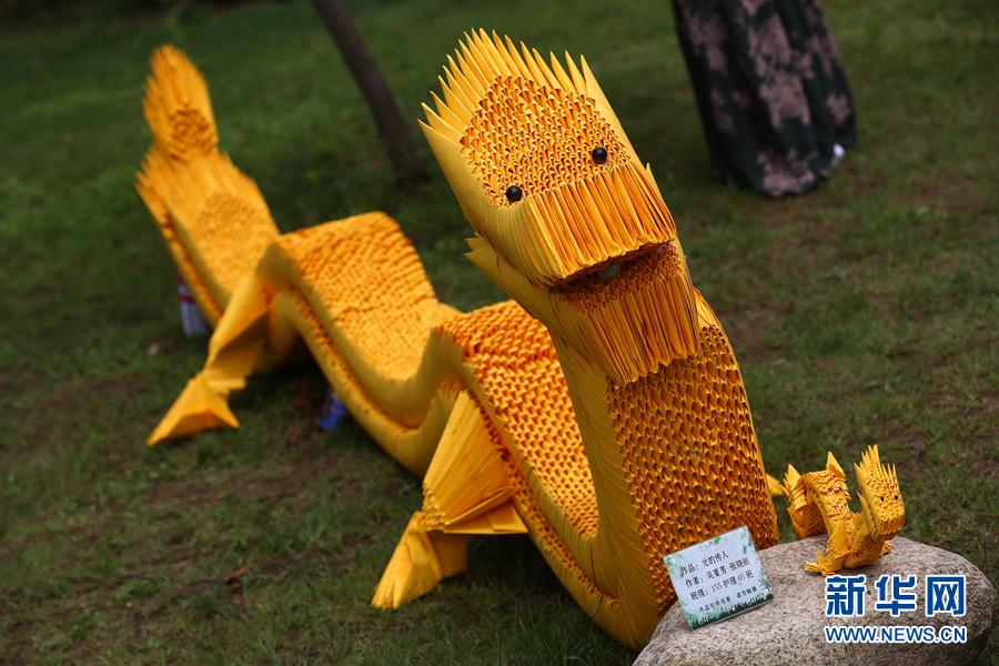 5月23日,环保创意手工制作展上的创意作品《龙的传人》.